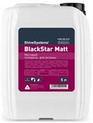 blackstar-matt-chernitel-reziny-5l